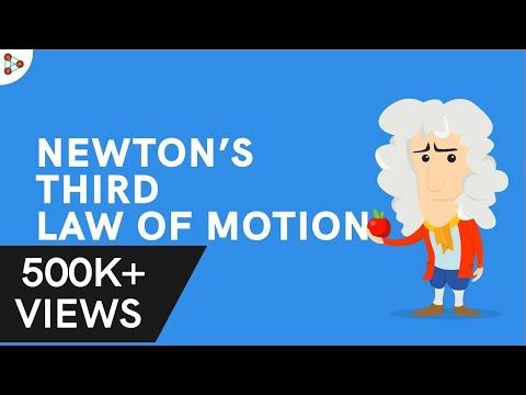 Physics - Newton's Third Law of Motion