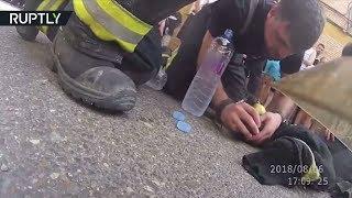 Видео с нательной камеры: испанские пожарные спасли собаку из огня