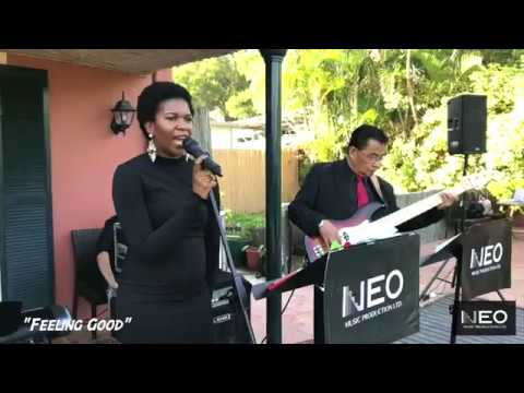Neo Music Production -