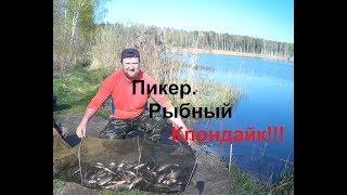Карась,отличная рыбалка!!!