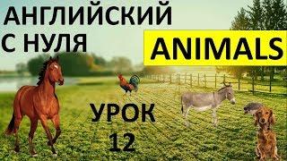 """Урок 12. НОВЫЕ СЛОВА ПО ТЕМЕ """"ЖИВОТНЫЕ"""" (ANIMALS), ПРАВИЛА ЧТЕНИЯ (Max Heart)"""