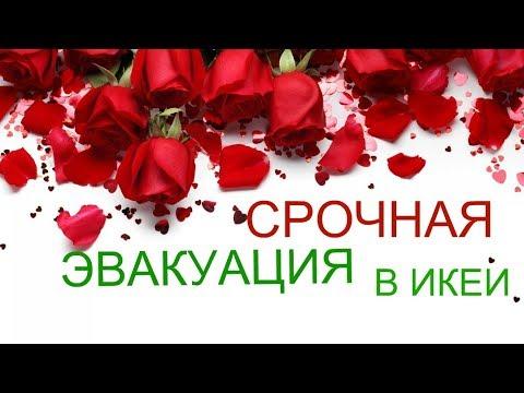 СРОЧНАЯ ЭВАКУАЦИЯ  В ИКЕИ/МОСКВА/14 КМ МКАДА/НОВИНКА 2019 Г