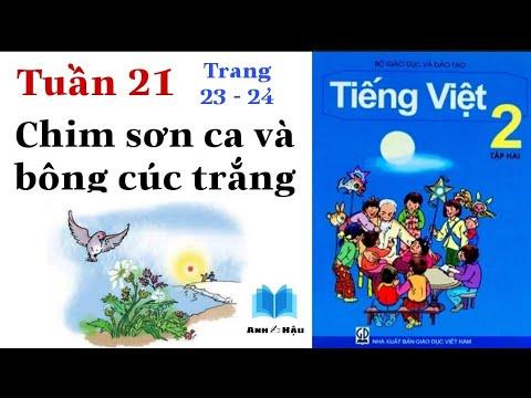 Tiếng Việt Lớp 2 | Tuần 21 | CHIM SƠN CA VÀ BÔNG CÚC TRẮNG | Tập 2 | Trang 23 - 24