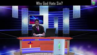 Why God Hate Sin?