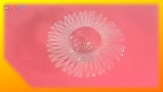 Reciclaje: Hacer un florero con una botella plástica