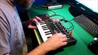 Microbrute Experiment - Polynomial C Bassline