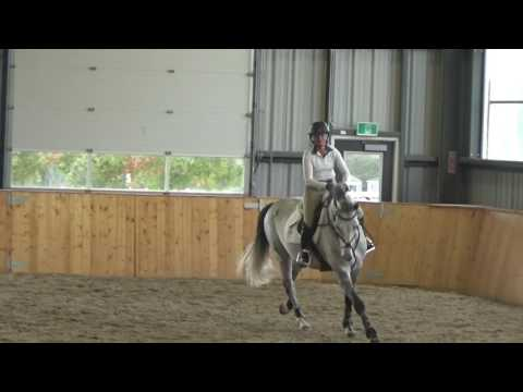 George Morris Clinic October 8th and 9th Caledon Equestrain Park