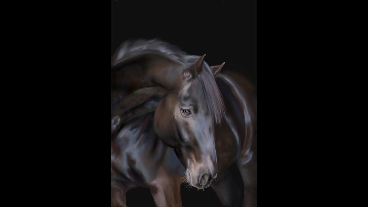 How I Draw a Realistic Horse portrait - digital painting of Navarra