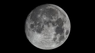 4K LIVE Moon and Vibrate - Children of a Higher God