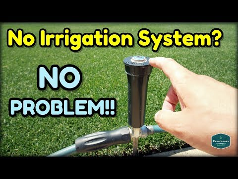 How To Water Your Lawn WITHOUT an Irrigation System