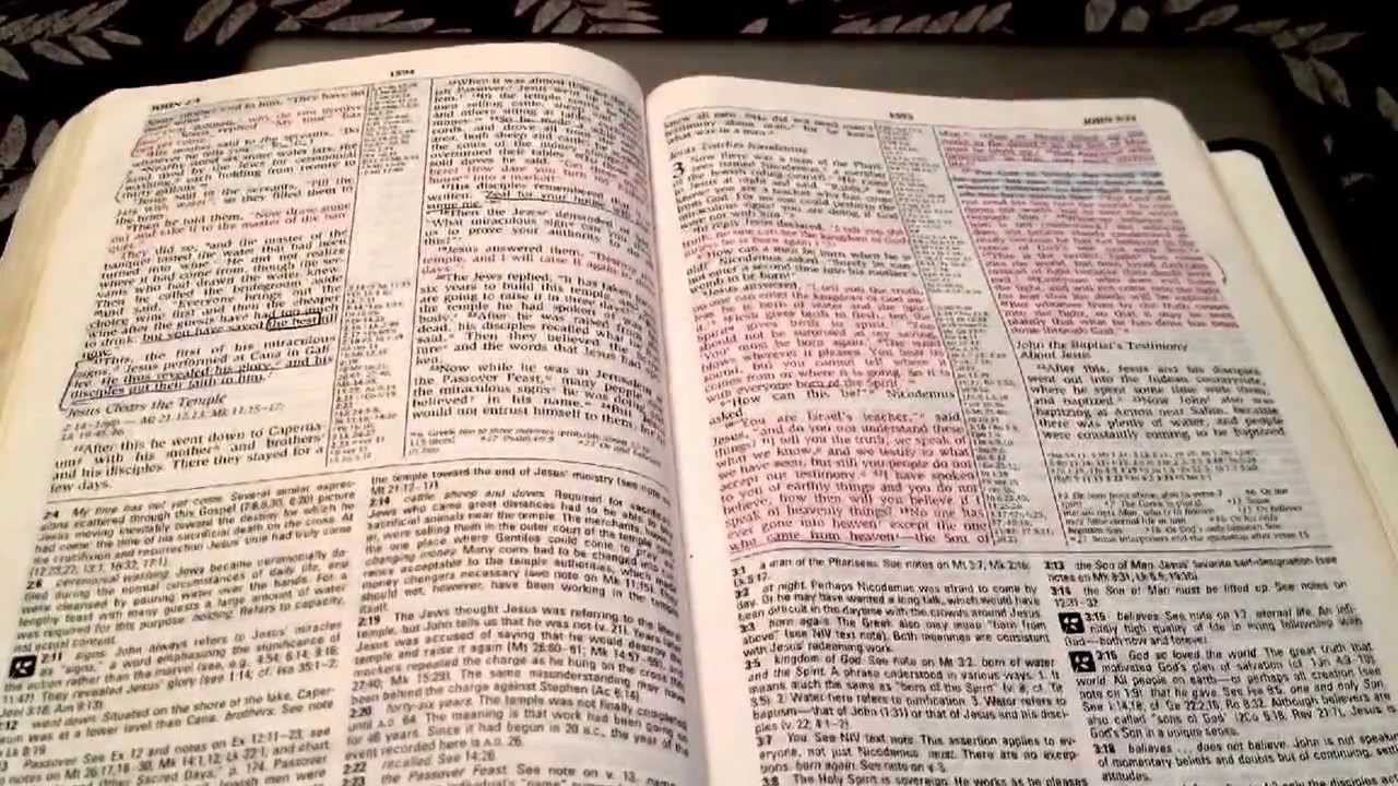 niv study bible review