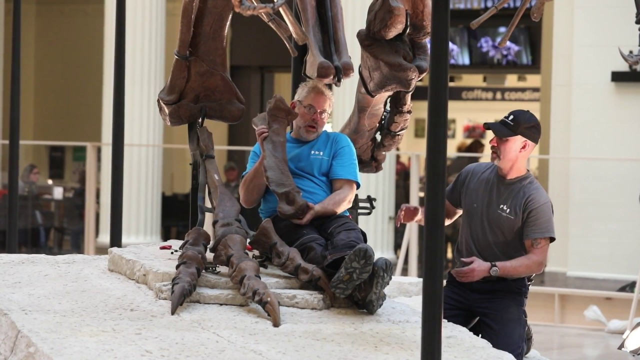 Sue the T-Rex moving to new home at Field Museum