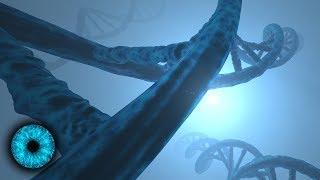 Gene steuern durch Gedanken?- Clixoom Science & Fiction