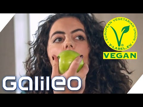 Was Wäre, Wenn Alle Vegan Leben Würden? | Galileo | ProSieben
