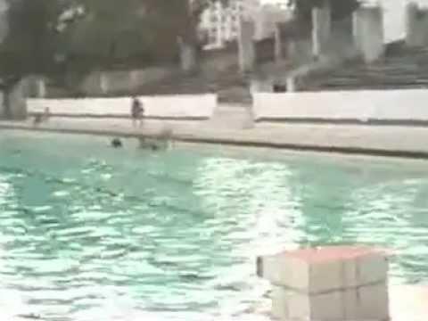 Bangladesh Swimming Pool At Golistan Youtube