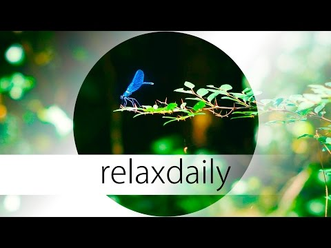 Music for Yoga, thinking, being creative and relaxation - N°039 (4K)