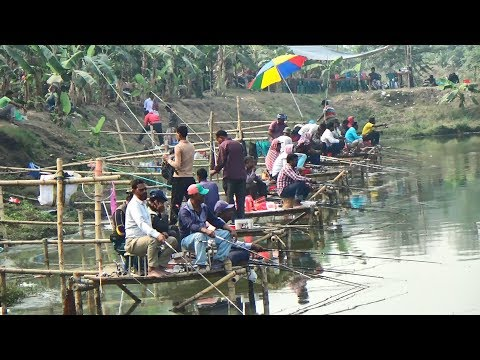 Fishing Competition in Village | Festival Fishing Video By Daily Village Life (Part-07)
