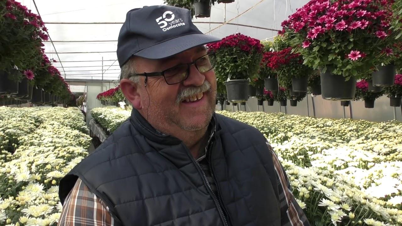 Interviu Alexandru Szilagyi - horticultor Viișoara (18.10.2019)