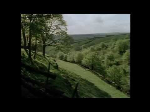 Theme from Last Of The Summer Wine (Full Orchestra)