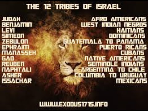 tribes chart non negro challenge bastards not israel also youtube rh