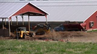 Industrial Farming in Surry County