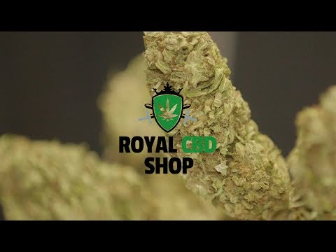 ROYAL CBD SHOP (OFFICIAL VIDEO) Film By Nomade Films Production