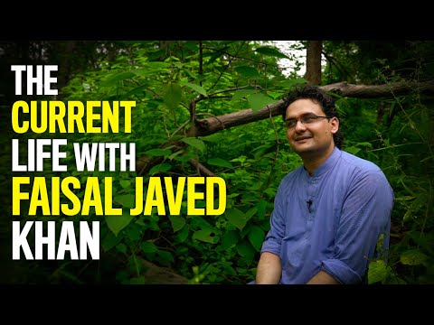 The Current Life with Senator  Faisal Javed Khan   The Current
