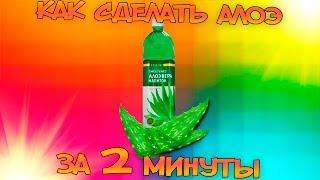 видео АЛОЭ СОК