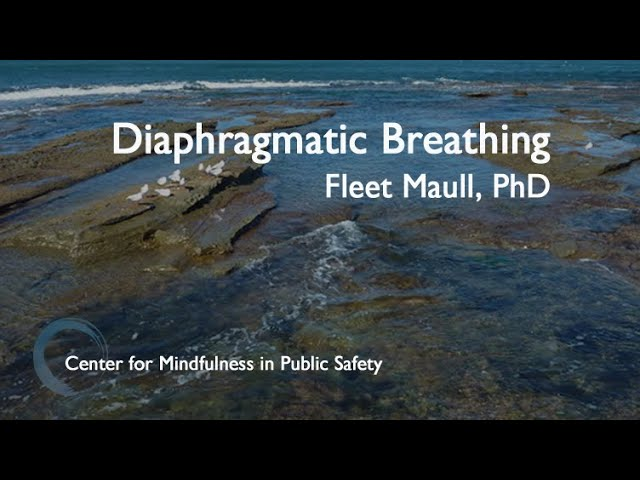 CMPS MBWR Diaphragmatic Breathing