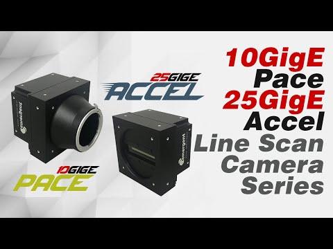 ACCEL LB-8K: 8K CMOS Line Scan 25GigE Camera Series