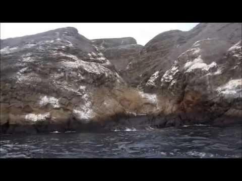 A Day at the Galapagos (2015)