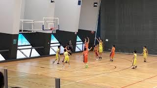 Publication Date: 2020-01-14 | Video Title: 【香港籃球】x【小學籃球】2019/20 小學校際 @沙田區