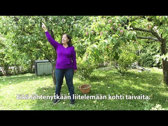 Ikäinstituutti: Omenat koriin, Kunnon eväät - liike 32