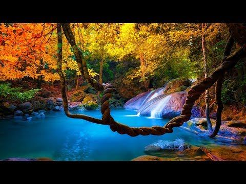 Music to Calm: Zen Meditation Music, Relaxing Music, Sleep, Spa, Study (Wisdom of the Zen)