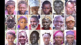 Africans have the MOST GREATEST GENETIC VARIATIONS
