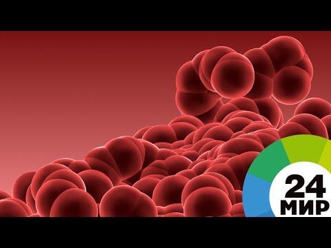 Обмануть рак. В борьбе с «чумой нашего времени» сделан беспрецедентный прорыв - МИР 24