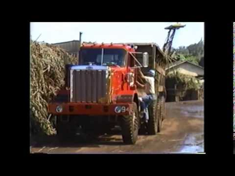 Hamakua Sugar Company, The Cane Truck Driver (1988)