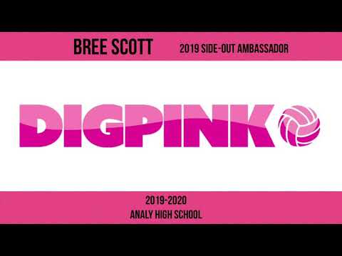 Dig Pink Analy High School 2019 Side-Out Foundation