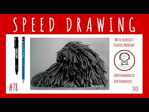 #78 - Sophie - The Hungarian Puli - Art in a minute (Timelapse)