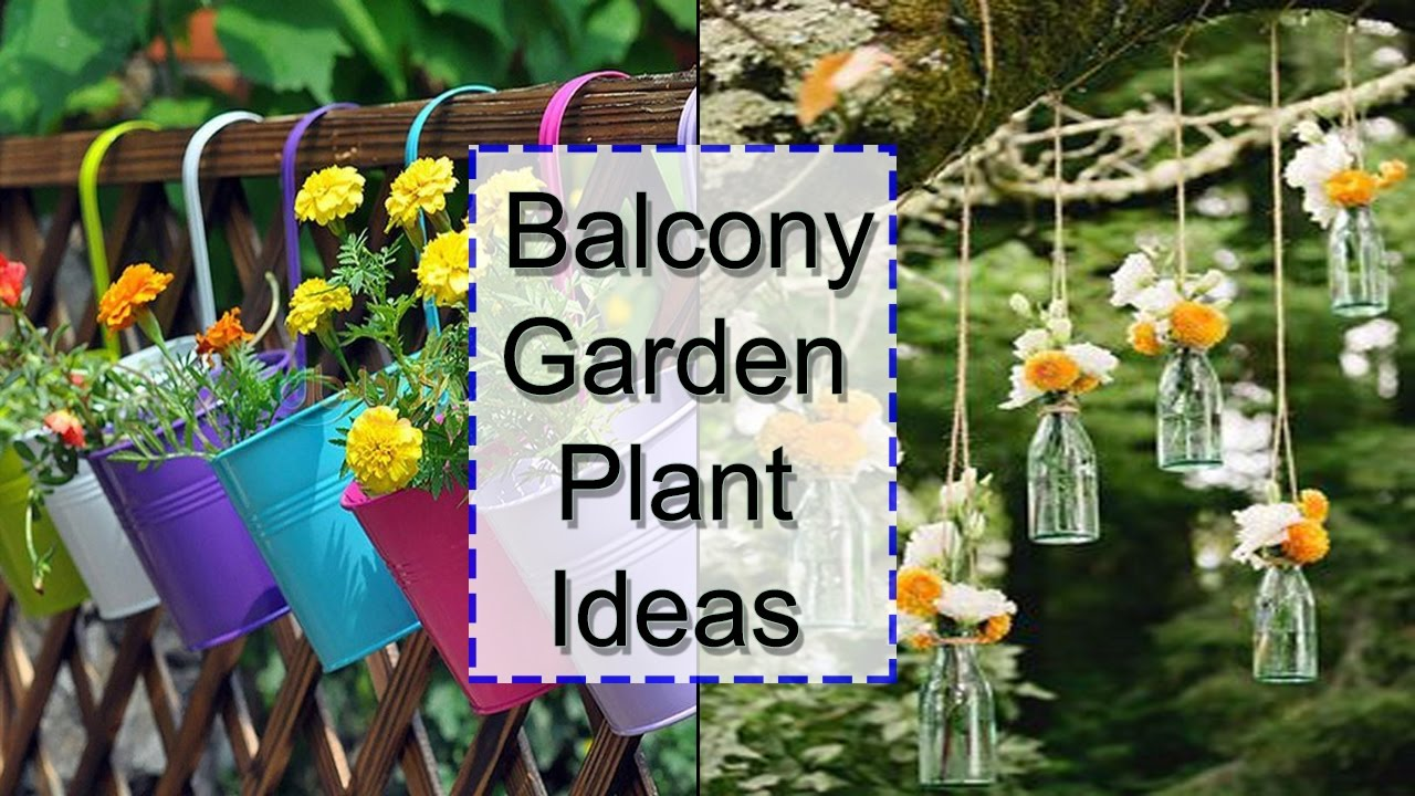 Balcony Garden Plant Ideas | DIY   YouTube