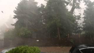 Windhose/Tornado/Downburst zieht durch Halle/Blumenau/Waldstraßenviertel