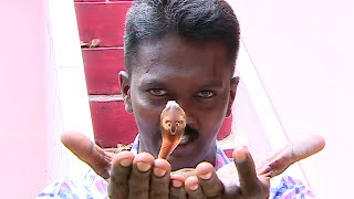 Vava Suresh Caught baby Cobra Snake inside fish tank | SNAKE MASTER EPI 150 1/2 | Kaumudy TV