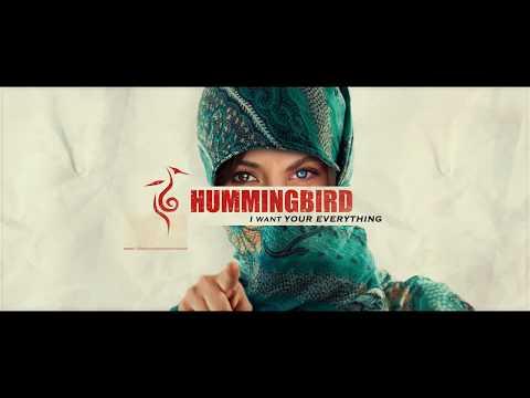 Hummingbird- TV Pilot (Trailer) Chicago Independent Film Festival