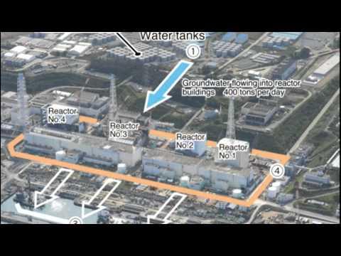 Fukushima Water Hazards