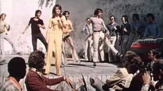 Любовь одна виновата ВИА Весёлые ребята 1975 год