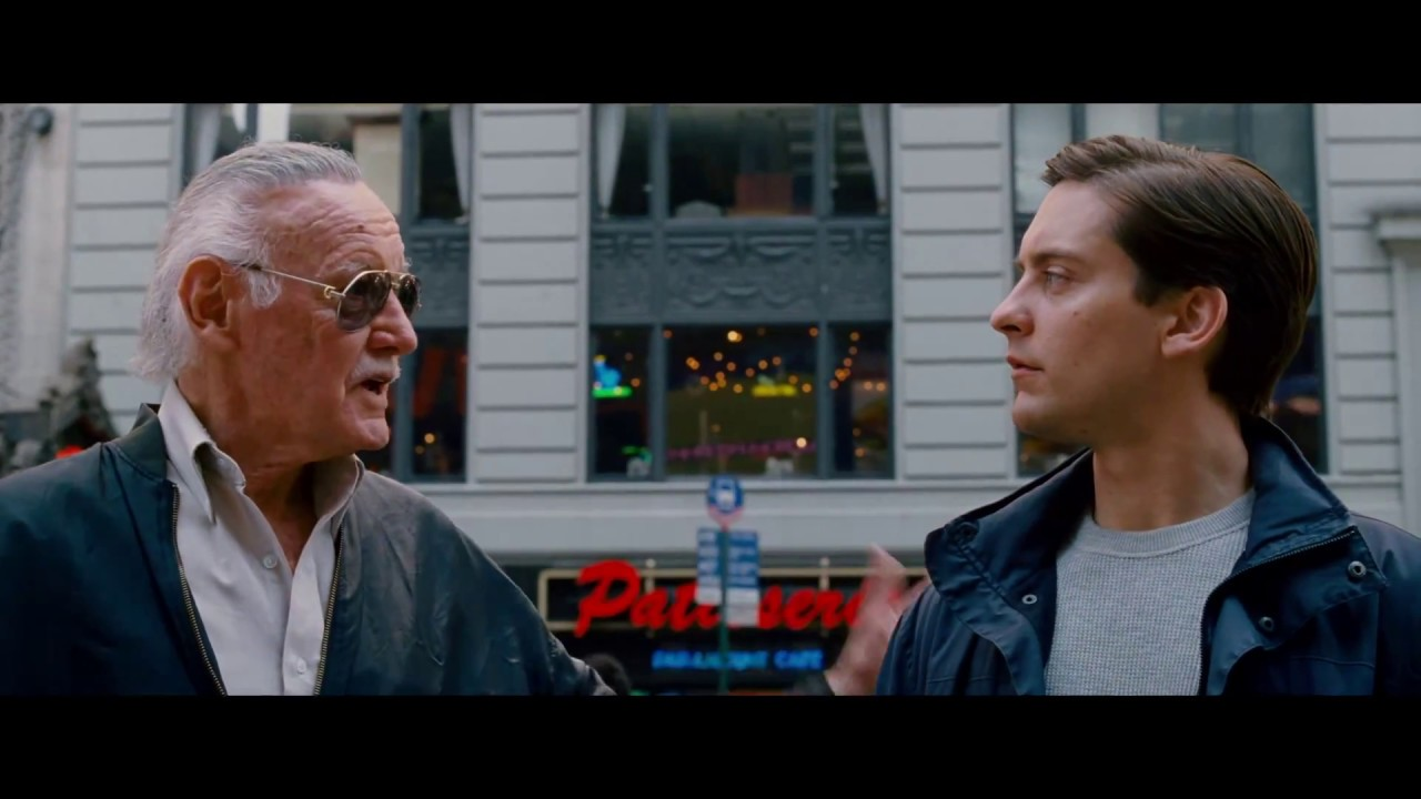 Image result for stan lee spider-man cameos