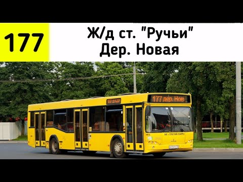 """Автобус 177 """"Ж/д ст. """"Ручьи - Деревня Новая"""" (трасса изменена)"""