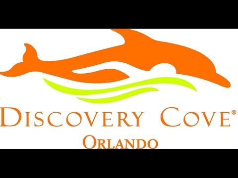 Amazing, Discovery cove,  SeaWorld Parks & Entertainment,  in Orlando, Florida  USA