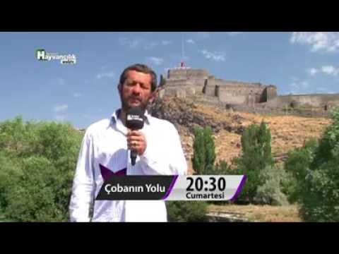Kars Kazı - Volkan Eliş - 0543 475 12 67