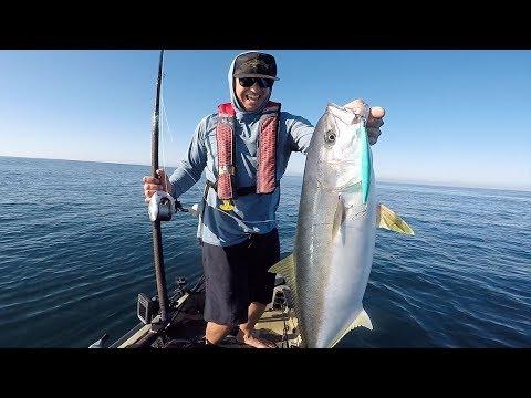 Surface Iron Fishing - Yellowtail On The Hobie Kayak